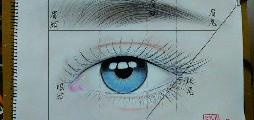 眉型結構圖,眉型設計,台中有名的紋繡老師,台中繡眉,台中飄眉,台中霧眉